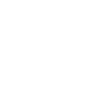 dragonfly-logo-white